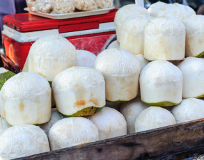 Kokosnusshändler