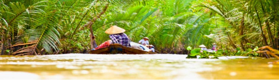 Typischer Seitenarm des Mekong
