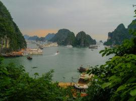 Blick auf eine Vielzahl an Schiffen in der Halong Bucht